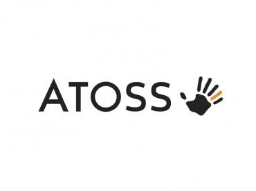 Atoss Software Ag Aktie